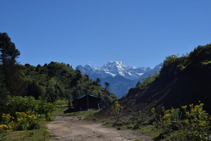 View during trek